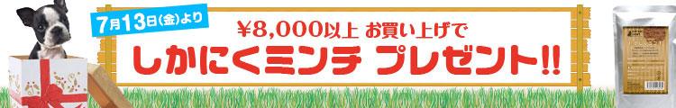 8,000円以上ご購入でしかにくミンチプレゼンキャンペーン