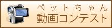 ペット  ちゃん動画コンテスト